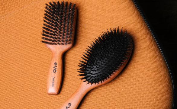 Evo Brush